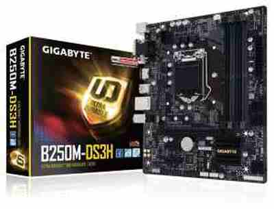 Gigabyte B250M MotherBoard | GIGABYTE GA-B250M-DS3H LGA Motherboard Price 5 Jun 2020 Gigabyte B250m Intel Motherboard online shop - HelpingIndia