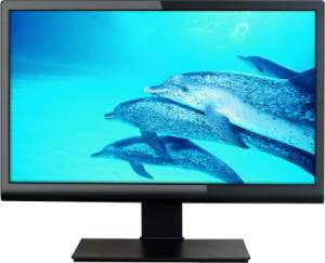 Micromax 19.5 inch LED Backlit LCD MM195H76 Monitor