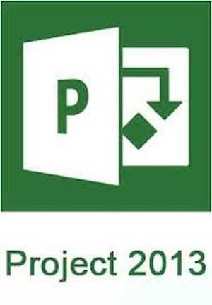 Microsoft ms Project 2013 Standard Software DVD Box